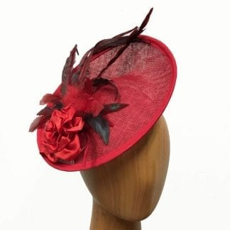 red fascinator feathers