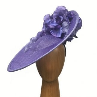Purple fascinator iris flowers